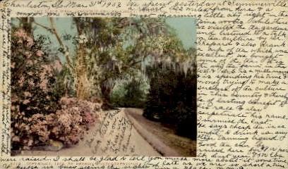 Magnolia-On-The-Ashley - Charleston, South Carolina SC Postcard