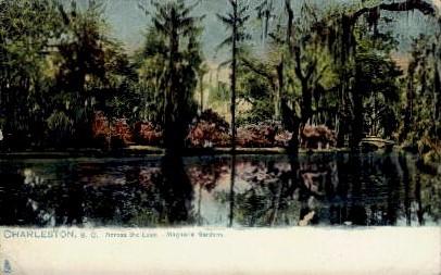 Across the Lake - Magnolia Gardens - Charleston, South Carolina SC Postcard