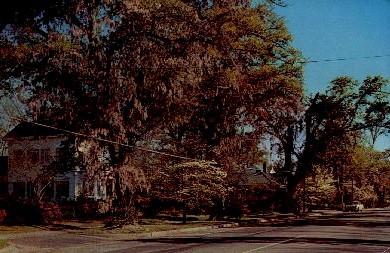 Street Scene - Manning, South Carolina SC Postcard