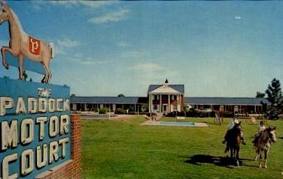 The Paddock Motor Court - Manning, South Carolina SC Postcard