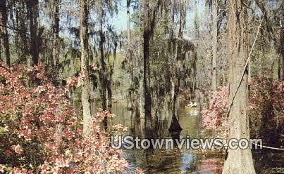Cypress Gardens - Berkeley County, South Carolina SC Postcard