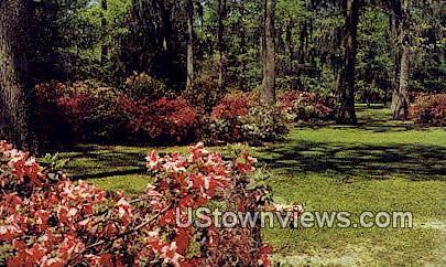 Edisto Memorial Gardens - Orangeburg, South Carolina SC Postcard