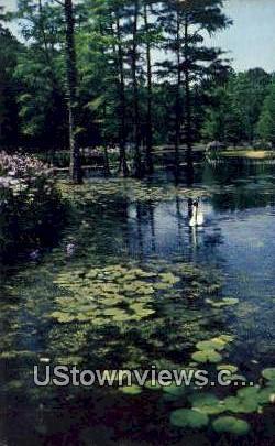Swan Lake Gardens - Sumter, South Carolina SC Postcard
