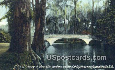 Magnolia Gardens - Summerville, South Carolina SC Postcard