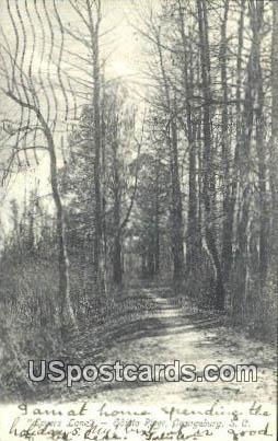Lovers Lane, Edistor River - Orangeburg, South Carolina SC Postcard
