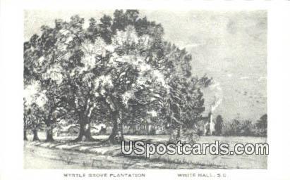 Myrtle Grove Plantation - White Hall, South Carolina SC Postcard