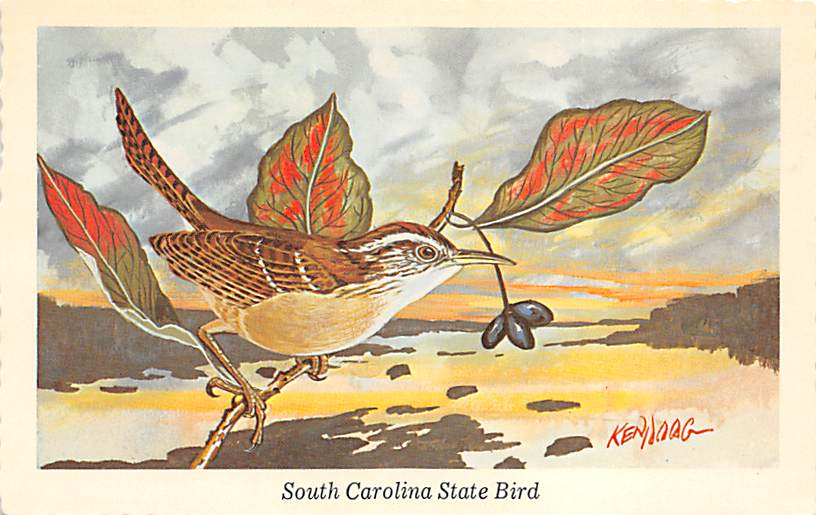 State Bird SC