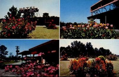 Pedro's Gardens - South of the Border, South Carolina SC Postcard
