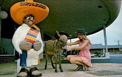 Pedro's Pet Burro - South of the Border, South Carolina SC Postcard