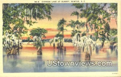 Cypress Lake - Sumter, South Carolina SC Postcard