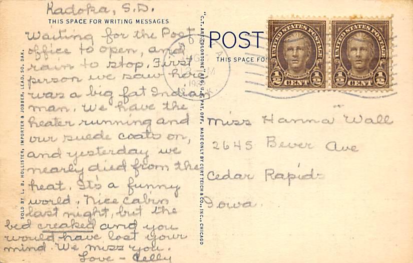 Buffaloes, Great Plains Zoo - Sioux Falls, South Dakota SD Postcard