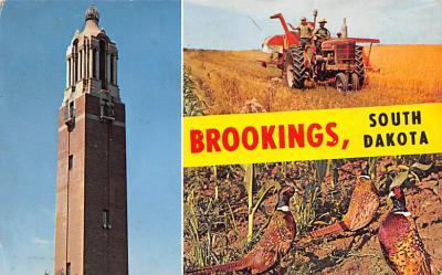 Brookings SD