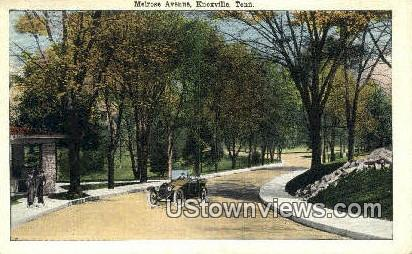 Melrose Ave - Knoxville, Tennessee TN Postcard