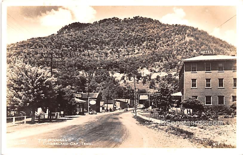 The Pinnacle - Cumberland Gap, Tennessee TN Postcard