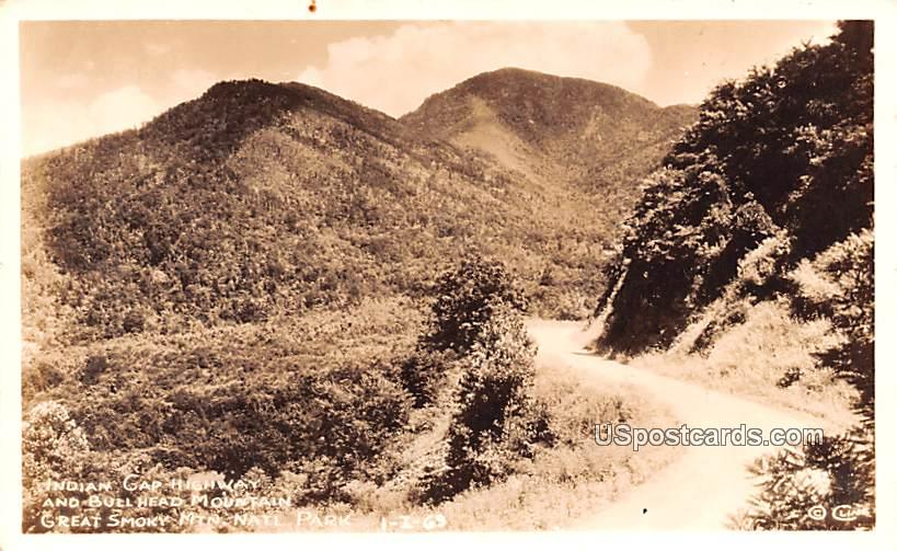 Indian Gap Highway - Great Smoky Mountains National Park, Tennessee TN Postcard