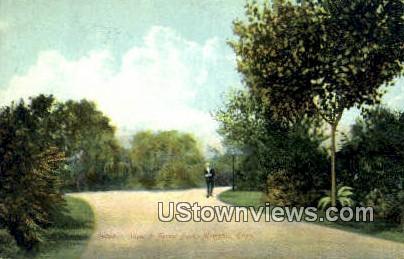 Forrest Park - Memphis, Tennessee TN Postcard