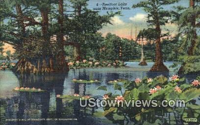 Reel foot Lake  - Memphis, Tennessee TN Postcard