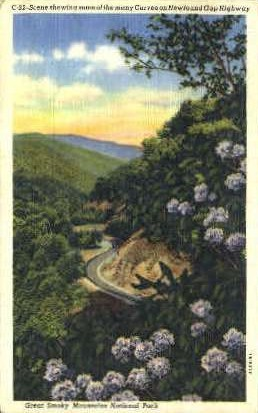 Newfound Gap Highway - Great Smoky Mountains National Park, Tennessee TN Postcard