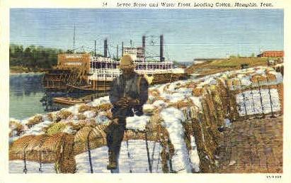 Levee Scene & Water Front - Memphis, Tennessee TN Postcard