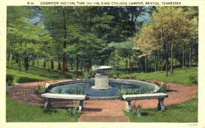 King College - Bristol, Tennessee TN Postcard