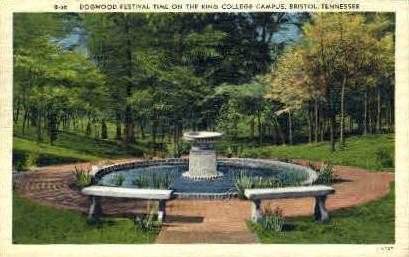 The King College Campus  - Bristol, Tennessee TN Postcard