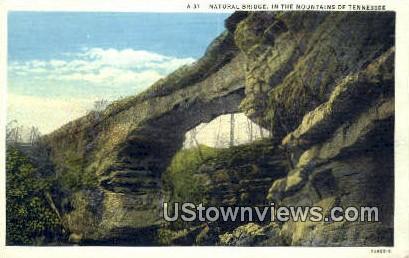 Natural Bridge - Misc, Tennessee TN Postcard