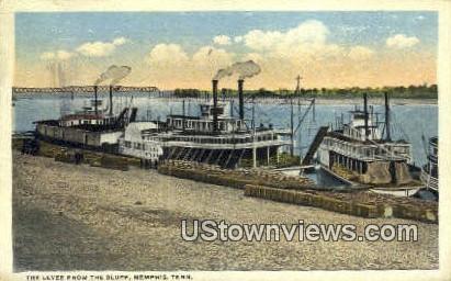 Levee, The Bluff - Memphis, Tennessee TN Postcard