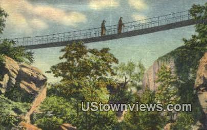 Sky Bridge In Rock City Gardens  - Lookout Mountain, Tennessee TN Postcard
