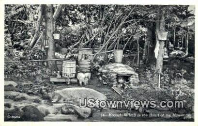 Moonshine Still Rock Gardens  - Misc, Tennessee TN Postcard