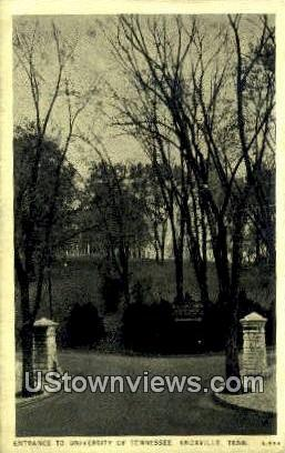Entrance To University Of Tennessee  - Knoxville Postcard
