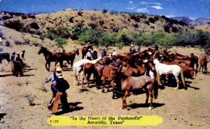 In The Heart of The Panhandle - Amarillo, Texas TX Postcard