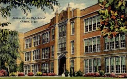 Abilene Senior High - Texas TX Postcard