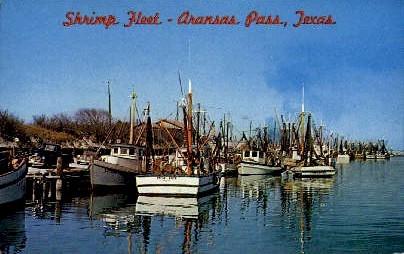 Shrimp Fleet - Aransas Pass, Texas TX Postcard