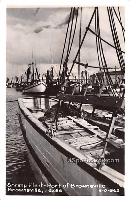Shrimp Fleet - Brownsville, Texas TX Postcard