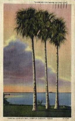 Looking Eastward to The Sea - Corpus Christi, Texas TX Postcard