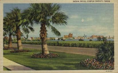 Ocean Drive - Corpus Christi, Texas TX Postcard