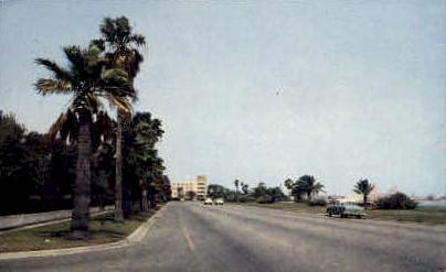 Beatiful Ocean Drive - Corpus Christi, Texas TX Postcard