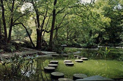 Japanese Garden - Fort Worth, Texas TX Postcard