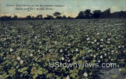 Cotton Field - Fort Worth, Texas TX Postcard