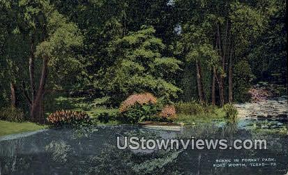 Forest Park - Fort Worth, Texas TX Postcard