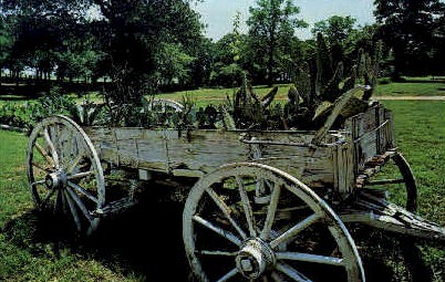 The Old Cactus Wagon - Grapevine, Texas TX Postcard