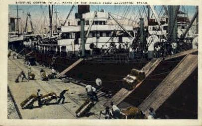 Shipping Cotton - Galveston, Texas TX Postcard