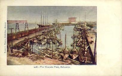 The Mosquito Fleet - Galveston, Texas TX Postcard