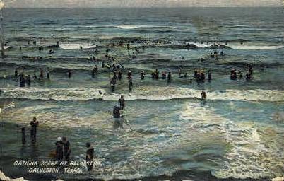Bathing Scene - Galveston, Texas TX Postcard
