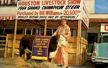Houston Livestock show - Texas TX Postcard