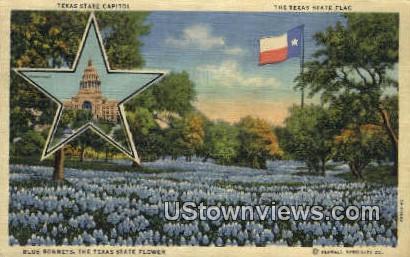 Texas State Capitol - Houston Postcard