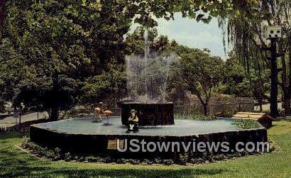 San Antonio Zoological Gardens & Aquarium - Houston, Texas TX Postcard