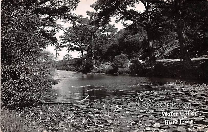 Water Lillies - Hunt, Texas TX Postcard
