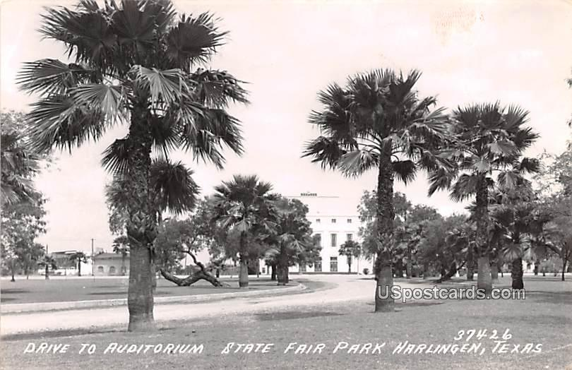 Drive to Auditorium State Fair Park - Harlingen, Texas TX Postcard