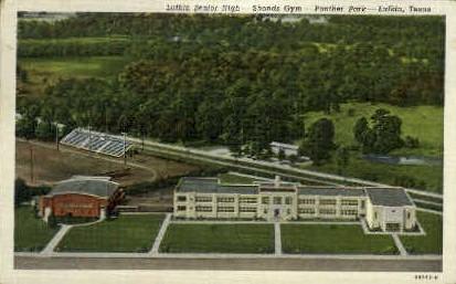 Lufkin Senior High - Texas TX Postcard
